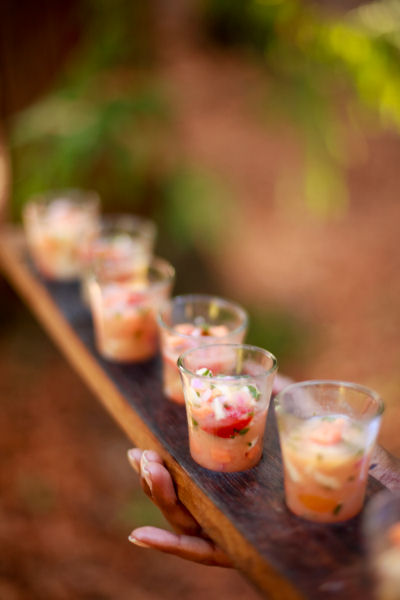 Hors D'oeuvres Ideas